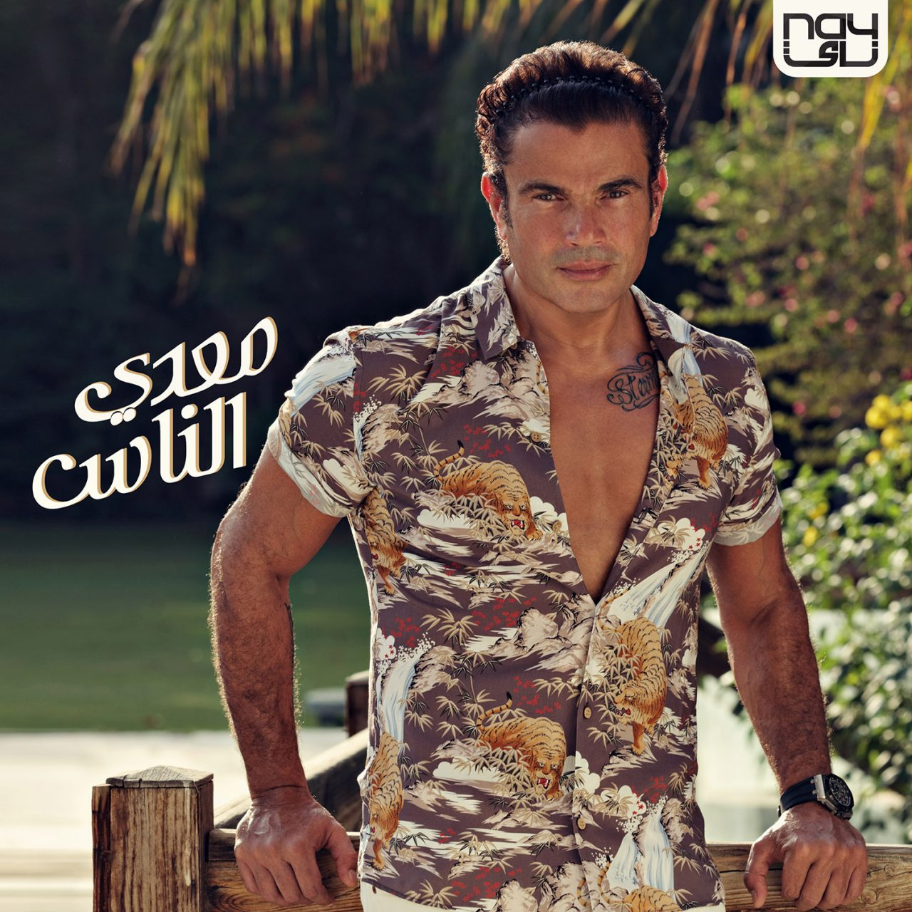 Meaddy El Nas Album, Amr Diab - 2017